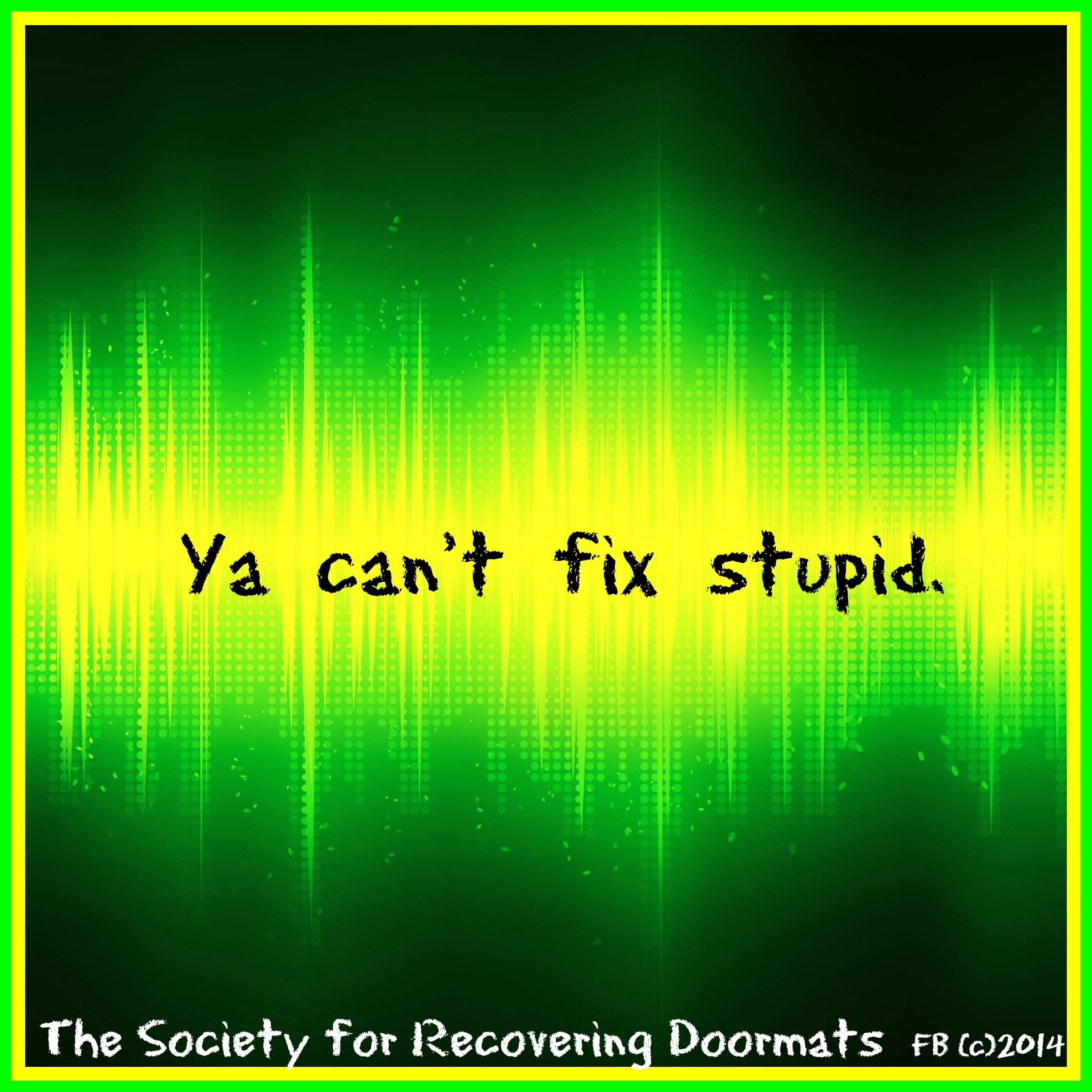 Ya can't fix stupid.